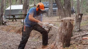 2015-10-ChainsawCourse-Cover